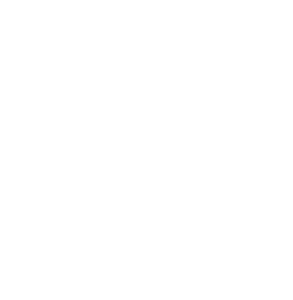 Afam conference 2020 logo